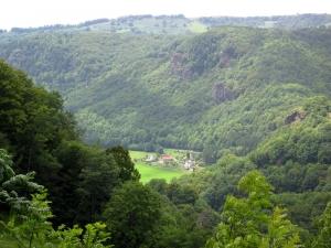etape11_saint_jacques_des_blats_vic_sur_cere_72