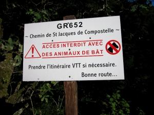 etape14_saint_etienne_cantales_camps_saint_mathurin_25
