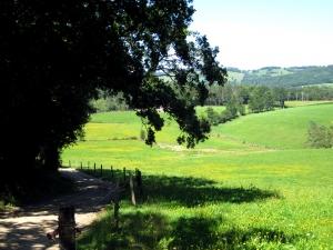 etape13_aurillac_saint_etienne_cantales_26