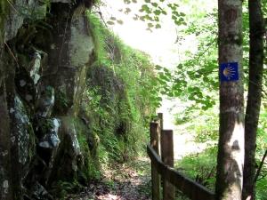 etape14_saint_etienne_cantales_camps_saint_mathurin_56