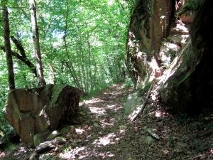 etape14_saint_etienne_cantales_camps_saint_mathurin_69