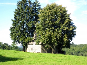 etape14_saint_etienne_cantales_camps_saint_mathurin_83